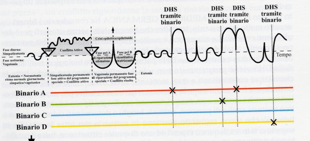 Le 5 Leggi Biologiche del Dott. Hamer PDF